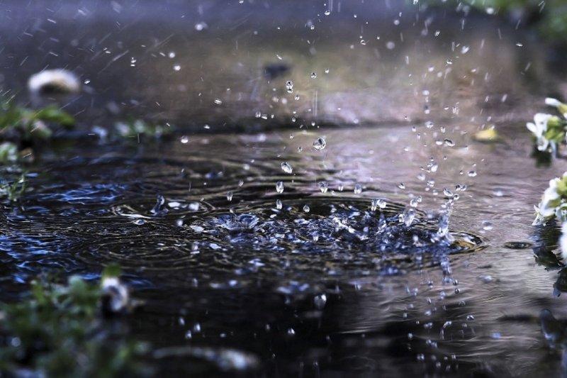 Холодное и дождливое лето ждет мурманчан