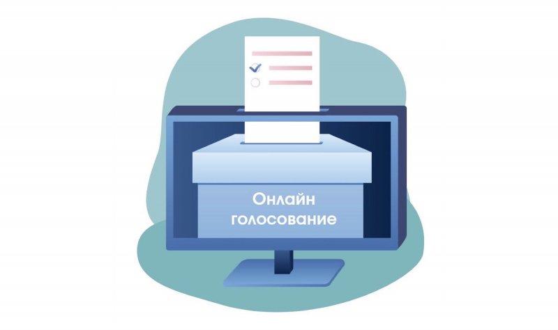 Эксперты рассказали об электронном голосовании в Заполярье