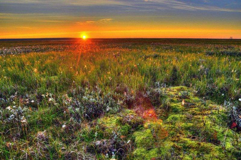 До +21° потеплеет в Мурманске уже в воскресенье