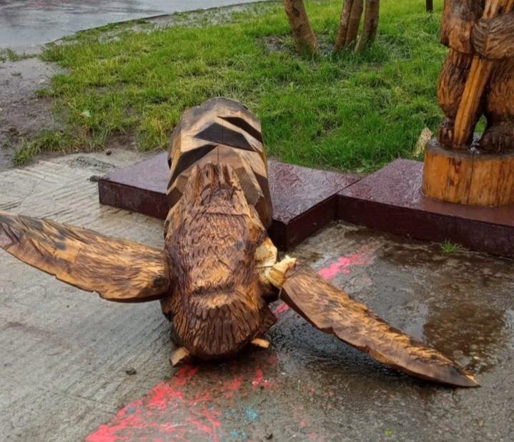 Ветер поломал крылья сове в Кировске