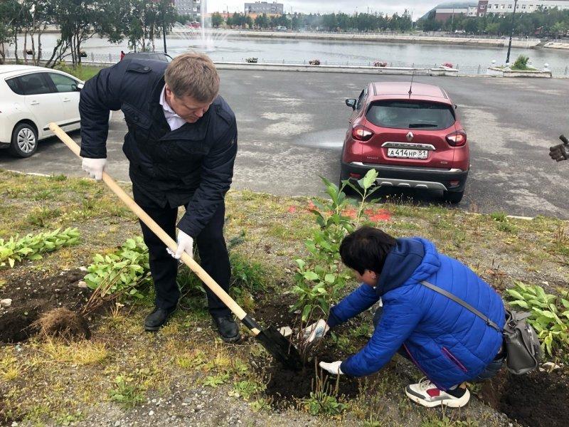 За лопату взялся глава администрации Кировска