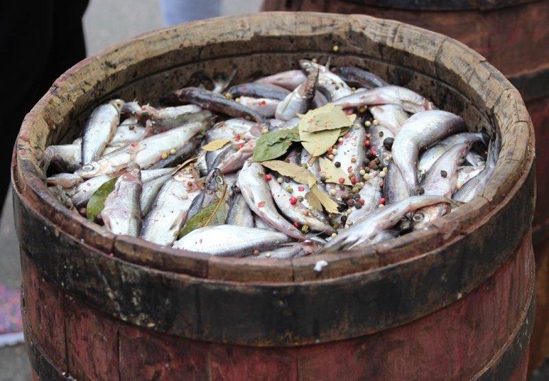 На треть дешевле будут цены на ярмарке «Наша рыба» в Коле