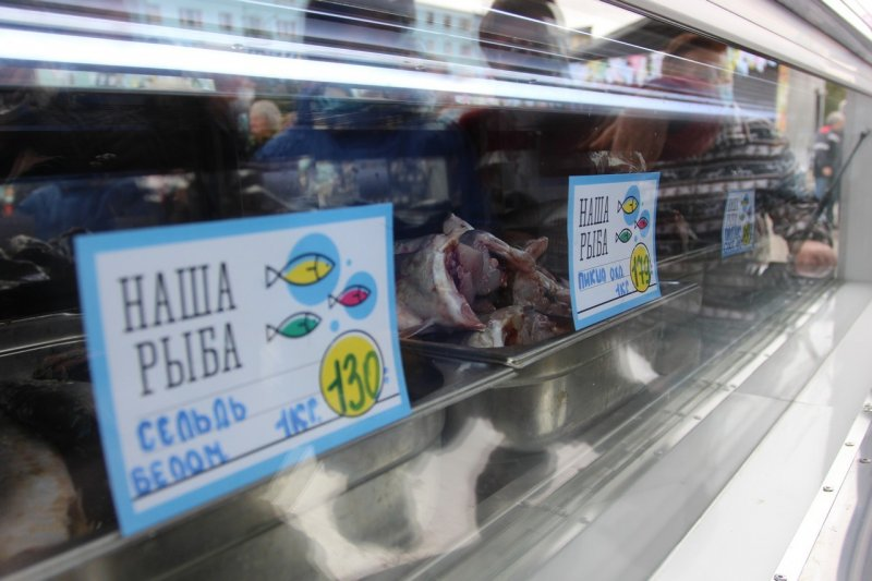 Ярмарка «Наша рыба» отправится в Североморск