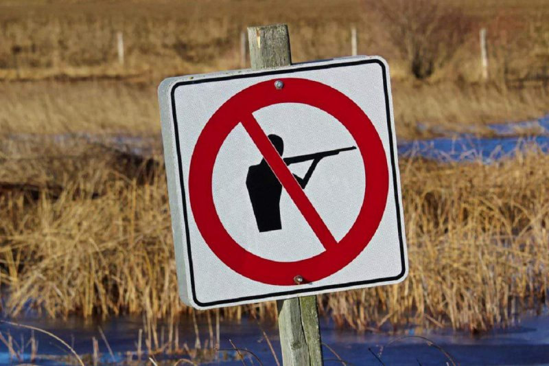 Запретили охоту в Оленегорском районе