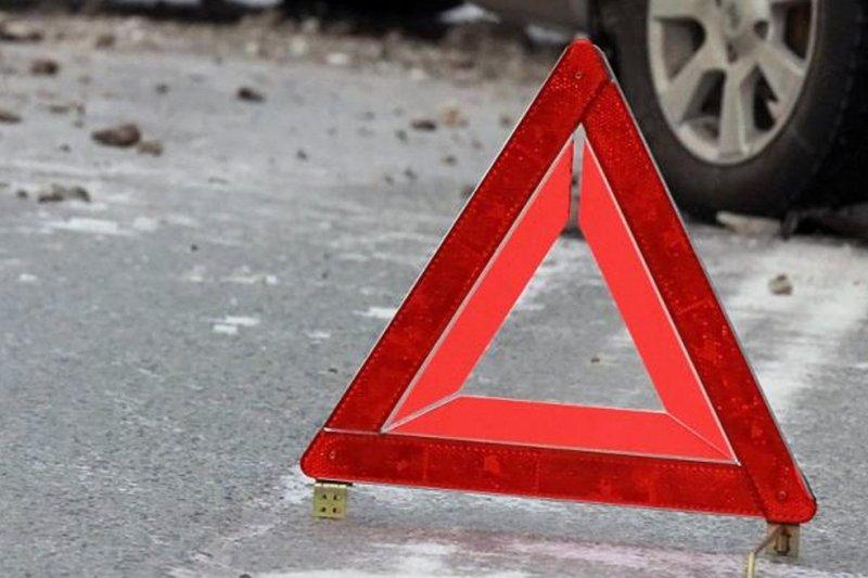 Погиб пешеход на трассе в Кандалакшском районе