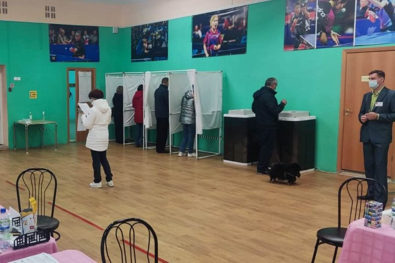 42% - явка избирателей на выборах в Мурманской области
