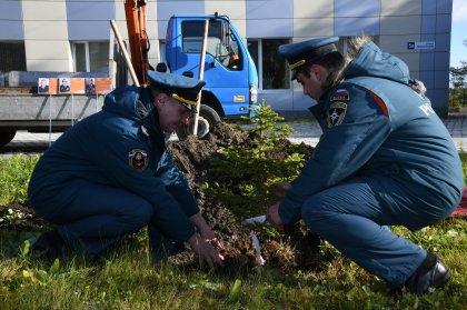 Экологи Кольской АЭС присоединились к эколого-патриотической акции «Лес Победы»