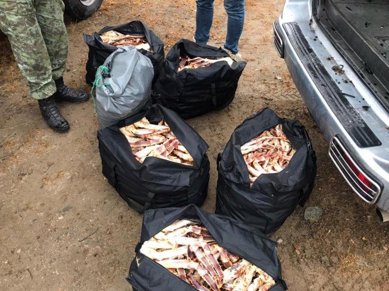 Браконьеры попытались скрыться от ФСБ в Кольском заливе